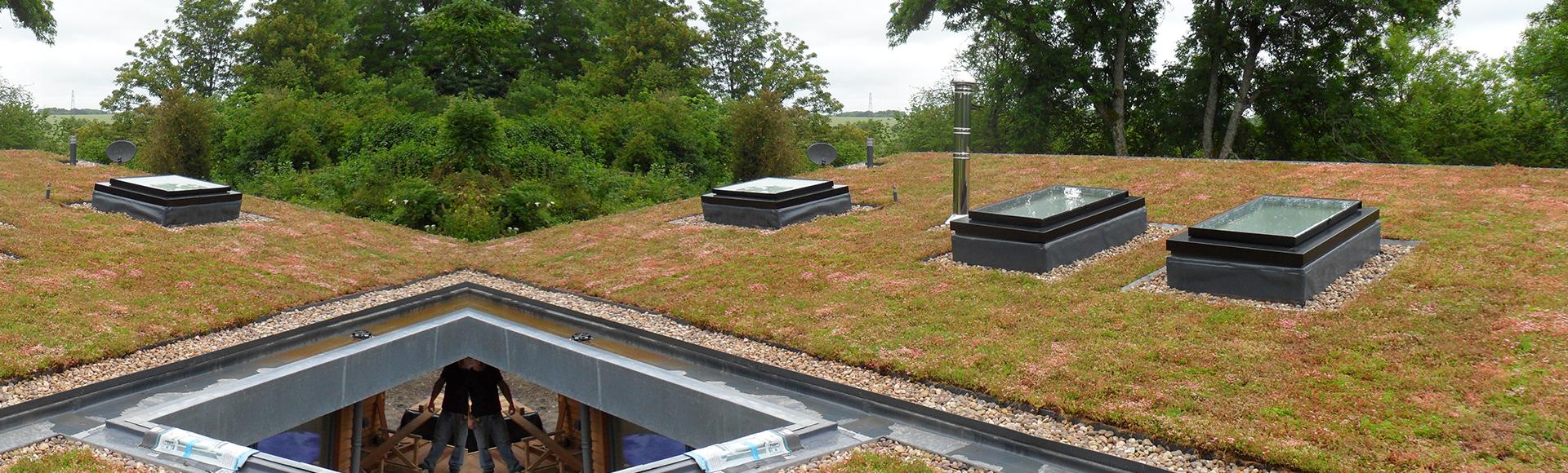 Sedum Green Roof Systems
