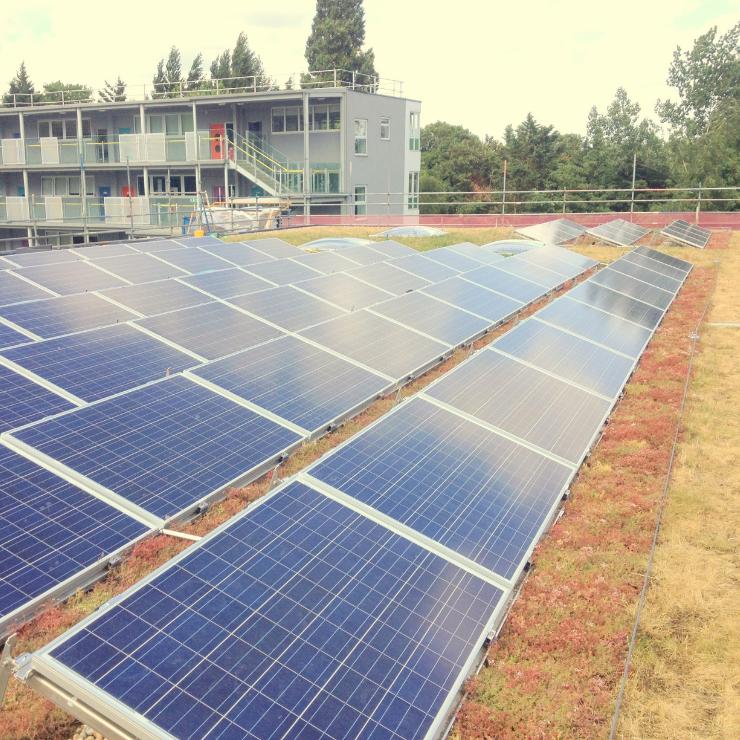 Bio-Solar Roof
