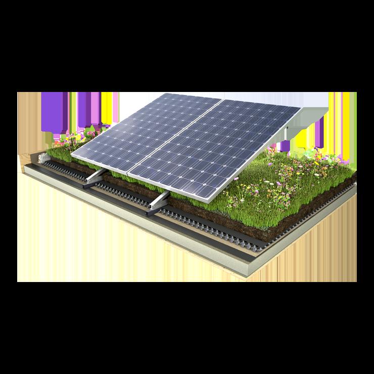 Bio-Solar