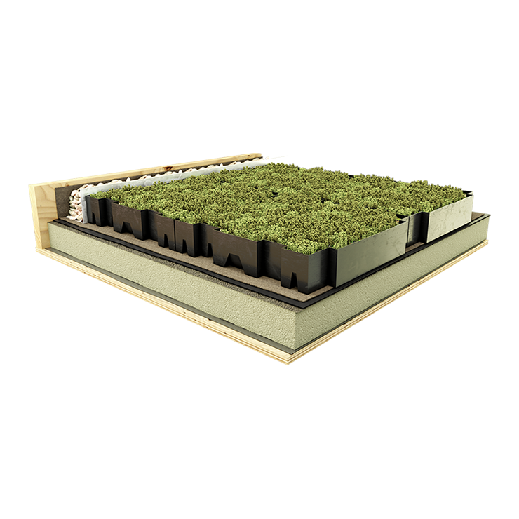 Modular Green Roof Systems